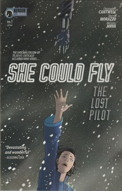 SHE COULD FLY LOST PILOT (2019)